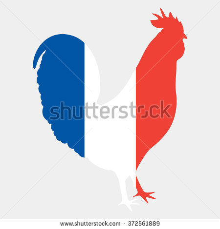 Stock Vector Illustration Of Gallic Rooster In French Flag Colors